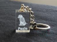 Personalización. Perro y nombre de su dueña.